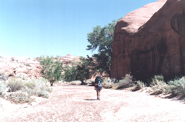 Beginning our hike down Coyote Gulch.